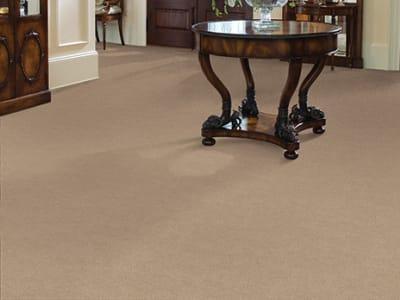 Room Scene of Americana - Carpet by Masland Carpets