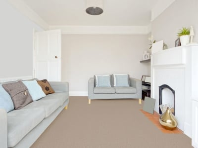 Room Scene of Exceptional - Carpet by Engineered Floors