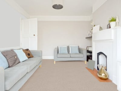 Room Scene of Cascade - Carpet by Engineered Floors