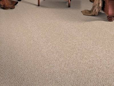 Room Scene of Calliope II - Carpet by Mohawk Flooring