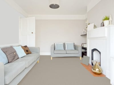 Room Scene of Sensational - Carpet by Engineered Floors