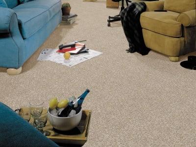 Room Scene of Natural Radiance - Carpet by Mohawk Flooring