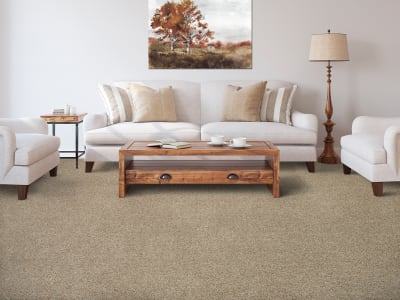 Room Scene of Color Harmony II - Carpet by Mohawk Flooring