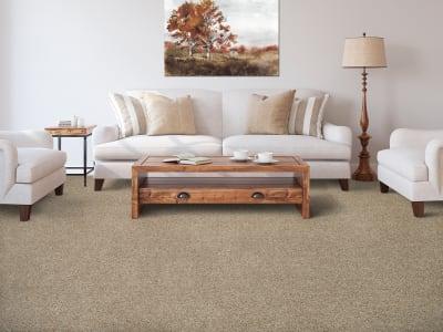 Room Scene of Medalist - Carpet by Mohawk Flooring