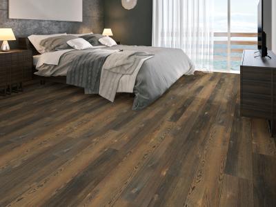 Room Scene of Blue Ridge Pine 720 C Hd Plus - Vinyl by Shaw Flooring