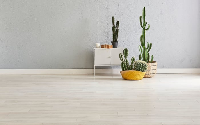 light gray laminate plank flooring with cacti