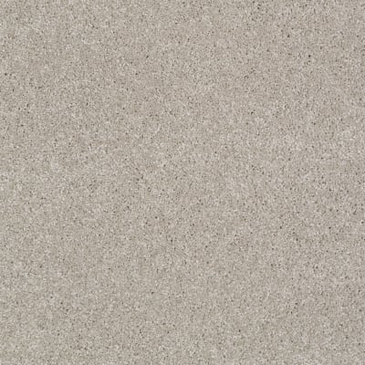 You Know It in Greige - Carpet by Shaw Flooring