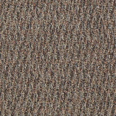 Speak Freely in Candid - Carpet by Shaw Flooring