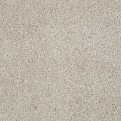 You Know It in Linen - Carpet by Shaw Flooring