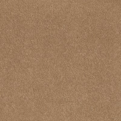 Sandy Hollow Classic I 12' in Cornfield - Carpet by Shaw Flooring