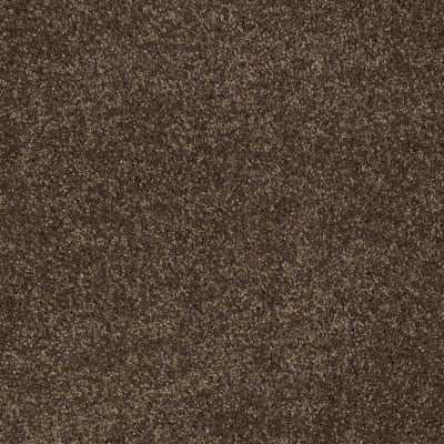 You Know It in Sedona - Carpet by Shaw Flooring