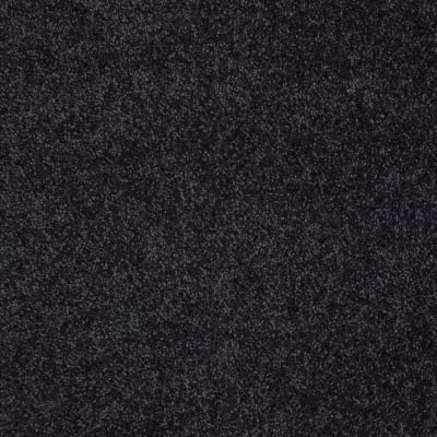 You Know It in Stunning Navy - Carpet by Shaw Flooring