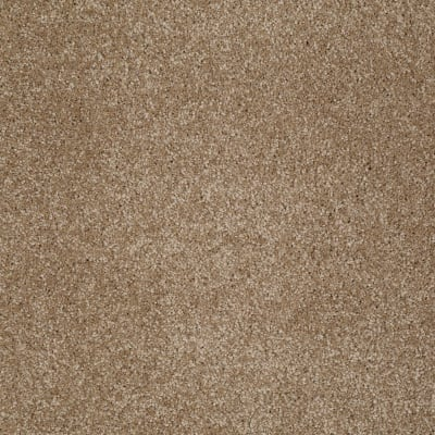 You Know It in Bridgewater Tan - Carpet by Shaw Flooring