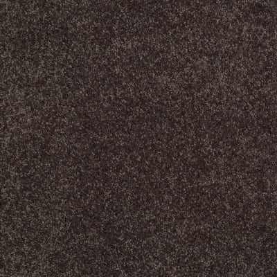 You Know It in Cabot Trail - Carpet by Shaw Flooring