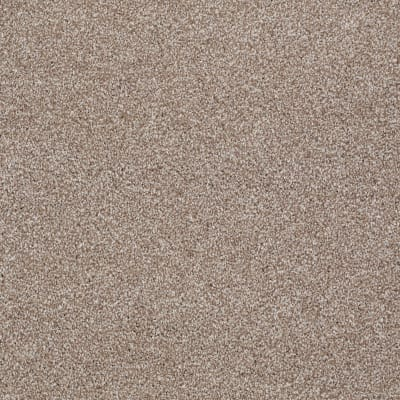 You Know It in Sombrero - Carpet by Shaw Flooring