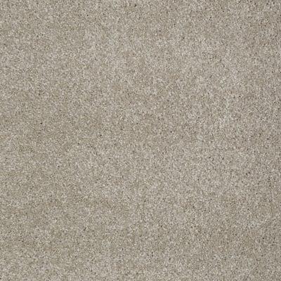 You Know It in Coastal Fog - Carpet by Shaw Flooring
