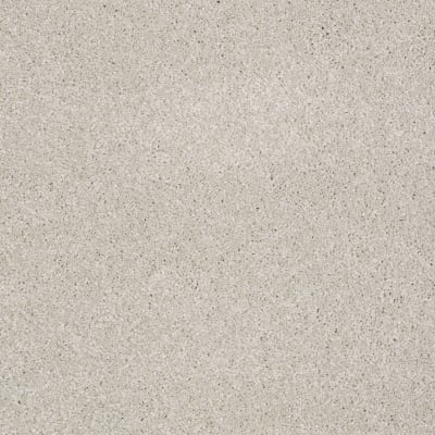 You Know It in Mist - Carpet by Shaw Flooring