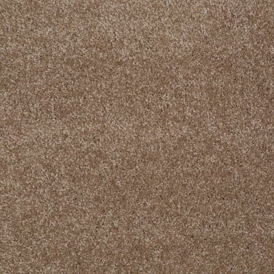 You Know It in Acorn - Carpet by Shaw Flooring