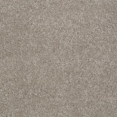 You Know It in Mocha Cream - Carpet by Shaw Flooring