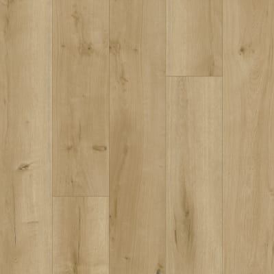 Perfect Manner in Amulet - Vinyl by Mohawk Flooring