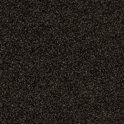 Of Course We Can II 12' in Rich Earth - Carpet by Shaw Flooring