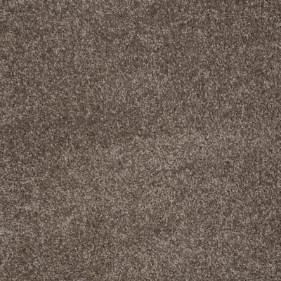 You Know It in Rustic Taupe - Carpet by Shaw Flooring
