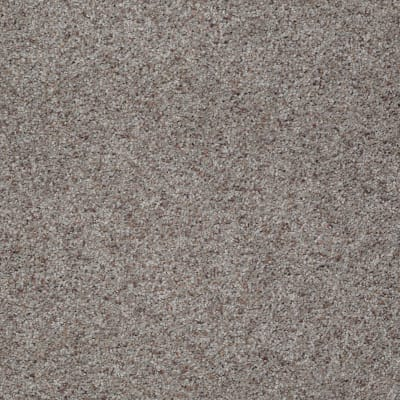 You Know It in Terrace - Carpet by Shaw Flooring