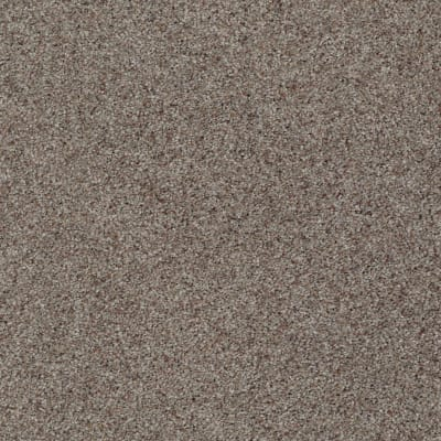 You Know It in Vintage - Carpet by Shaw Flooring