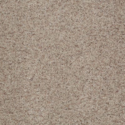You Know It in Classic - Carpet by Shaw Flooring