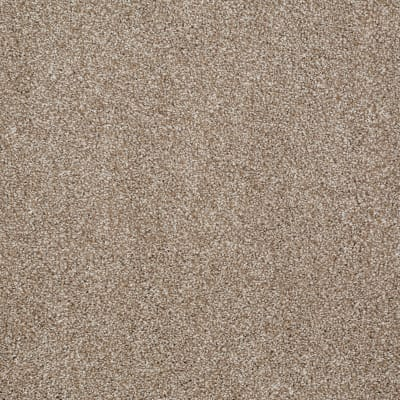 You Know It in Mole Hill - Carpet by Shaw Flooring