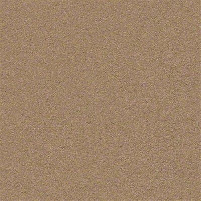 Second Glance in Desert View - Carpet by Shaw Flooring