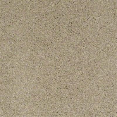 Quiet Comfort IV in Panama - Carpet by Shaw Flooring
