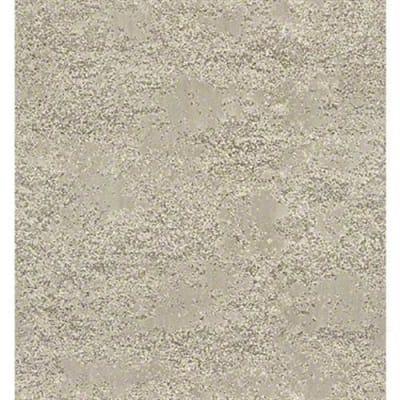 Tavares in Venetian - Carpet by Shaw Flooring