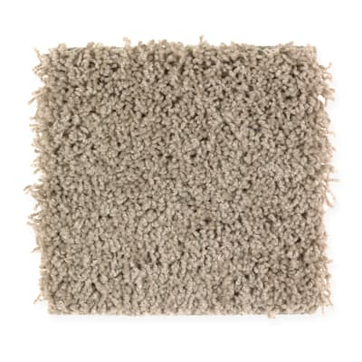 Precious Expression in Winter Leaf - Carpet by Mohawk Flooring