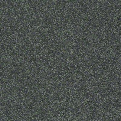Bright Idea II in Emerald Coast - Carpet by Shaw Flooring