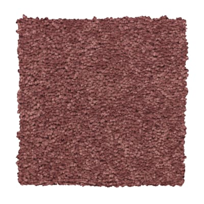 Lively Intuition in Intrigue - Carpet by Mohawk Flooring