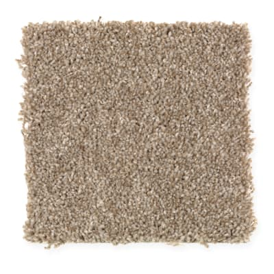 Harmony in Silk Wood - Carpet by Mohawk Flooring