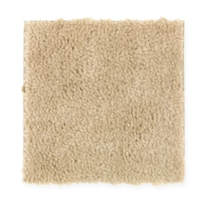 Everyday Living in Gold Coast - Carpet by Mohawk Flooring