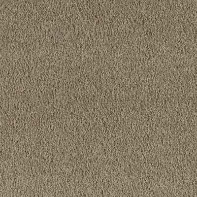 Youthful Spirit in Dry Grass - Carpet by Mohawk Flooring