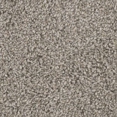 Knockout I in Meadow Trail - Carpet by Engineered Floors