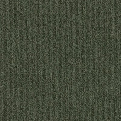Salisbury 26 in Forest Green - Carpet by Engineered Floors