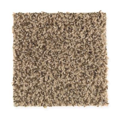 Seeker in Timberline - Carpet by Mohawk Flooring