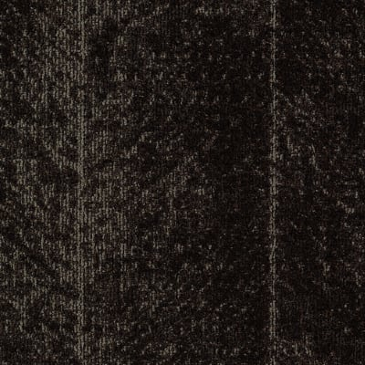 Highbrow in Potting Soil - Carpet by Mohawk Flooring