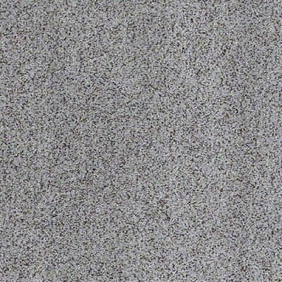 All There in Silver Fox - Carpet by Shaw Flooring