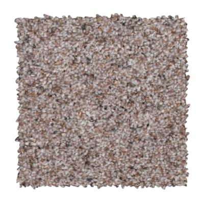 Earthly Details II in Warm Fog - Carpet by Mohawk Flooring