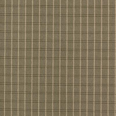 Familiar Frame in Sage - Carpet by Mohawk Flooring