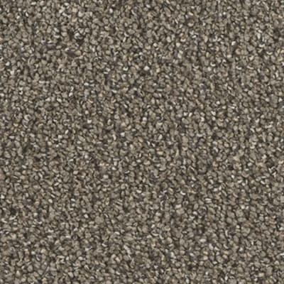 Remarkable II in Veranda - Carpet by Engineered Floors