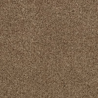 Gentle Embrace in Chocolate Swirl - Carpet by Mohawk Flooring