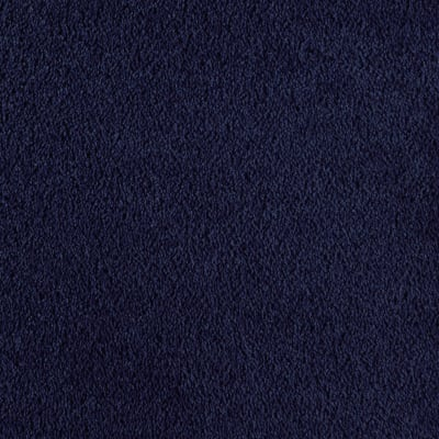 Bright Future in Night Navy - Carpet by Mohawk Flooring