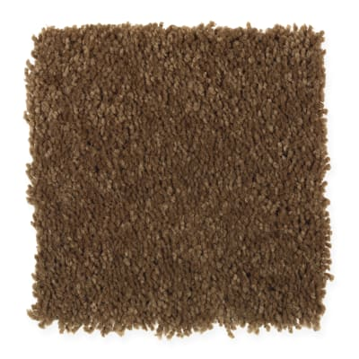 Favorite Color in Saddlery - Carpet by Mohawk Flooring